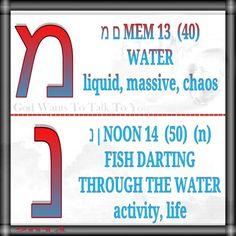 מ ם MEM 13  (40) WATER liquid, massive, chaos   נ ן NOON 14  (50)  (n) FISH DARTING THROUGH THE WATER activity, life