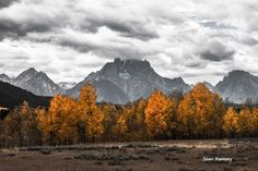 Nature Photography, Mountain Photography, Teton Print, Grand Tetons, Black and White, Golden Aspens, Cloudy, Wall Art, Art Photography by SouthernPlainsPhoto on Etsy