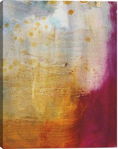 Abstracted Fruit XII Abstract Canvas Wall Art Print by Sylvia Angeli
