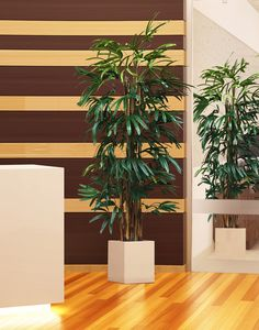 Elegant Lady Palm, (Rhapis Palm)   Classic Contemporary Tree for Interior Design.   International Treescapes Commercial Quality Artificial Lady Palm features IFR (Inherently Fire Retardant) Foliage to meet Building Codes.  It is a great space filler to add some greenery and softness to any interior.