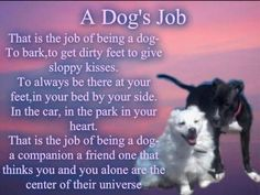A dog's job. Well, I have six that do a really good job at being one then. I Love Dogs, Puppy Love, Cute Dogs, Adorable Puppies, Baby Dogs, Dogs And Puppies, Doggies, Dog Poems, Dog Rules