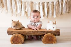 Easter photography special | Boston Family and Newborn Photographers | Robotti + Rosa