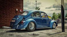 Drag bug