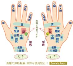 手のひら ツボ一覧 Acupuncture Points, Acupressure Points, Home Health, Health Care, Fitness Diet, Health Fitness, Hand Massage, Regenerative Medicine, Palm Reading
