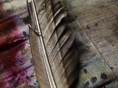 Calligraphy feather quills detail