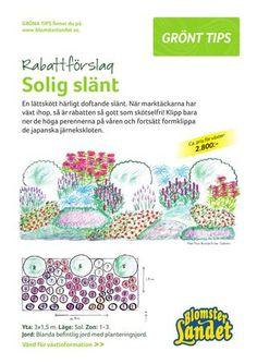 Rabattförslag: Solig slänt | Blomsterlandet.se