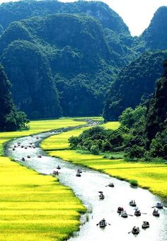 I want to be in VN Vietnam is a beautiful place to live and I want to experience that for myself. This channel will depict my journey to Vietnam. Vietnam Voyage, Vietnam Travel, Asia Travel, Wanderlust Travel, Visit Vietnam, Laos, Places Around The World, Travel Around The World, Around The Worlds