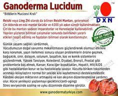 DXN Türkiye EN BÜYÜK EKİBİ  Selcan Bağcı Ceeport Team 0532 3041223  0850 8082676 http://www.ganodermaturkiye.com/ http://selcanbagci.dxn.com.tr spiriluna , dxn türkiye, noni, cordyceps, tırtılmantarı, kahve, ganokahve, dxnkahve, bitkiseltedavi, dxn, dxnganoderma, reishi, network, dxntürkiye, dxnkolesterol, dxntansiyon, dxnşeker, hastalığıtedavisi https://www.facebook.com/dxnturkiyetr/ , dxnturkiye, dxnürünler, ganoexcel, ogansia, dxnnedir, dxnyorumlar, dxnkayıt, dxnkahvekullananlar