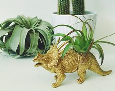 Gold Dinosaur Tillandsia Planter // Air Plant by Alycepaul on Etsy