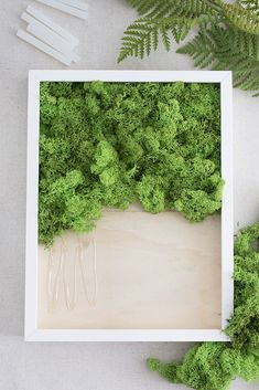 DIY moss pictures and how you can easily preserve forest moss yourself. Moss Wall Art, Moss Art, Jardin Vertical Artificial, Artificial Plants, Artificial Turf, Plant Wall, Plant Decor, Amazing Gardens, Beautiful Gardens