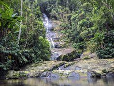 https://flic.kr/p/vfh1kv | Cascata Taunay, na Floresta da Tijuca, Rio de Janeiro, Brasil. | Taunay Cascade, at Tijuca Fores National Park.  Rio de Janeiro, Brazil. Have a great day! :-)  <u><i>To direct contact me / Para me contactar diretamente:</i> </u><b>lmsmartinsx@yahoo.com.br</b>