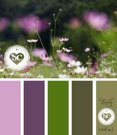 148 Lily Rose Hue by Asmalina © 2012 Sorbetcolour