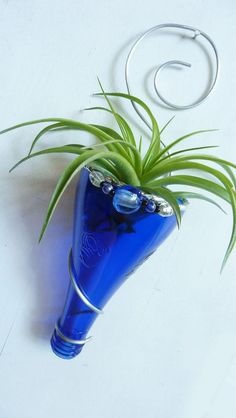 Air plant holder Recycled bottle sconce Blue with by glassetc: