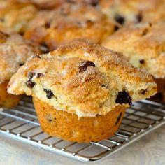 The Best Chocolate Chip Muffins - after 30 years of baking this is still my perfect chocolate chip muffin recipe. Moist on the inside with crisp top edges.