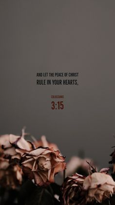 And let the peace of Christ rule in your hearts, to the which also ye were called in one body; and be ye thankful. Inspirational Bible Quotes, Bible Verses Quotes, Bible Scriptures, Quotes Quotes, Christ Quotes, Jesus Quotes, Faith Quotes, Jesus Wallpaper, Bible Verse Wallpaper
