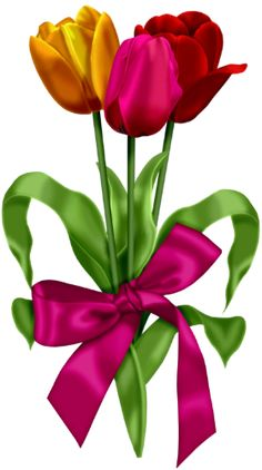 Red Pink and Yellow Tulips Clipart.