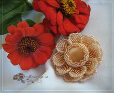 "Брошь ""Циния"" | biser.info - всё о бисере и бисерном творчестве Beading, Crochet Earrings, Brooch, Flowers, Jewelry, Beads, Jewlery, Jewerly, Brooches"