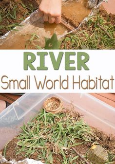 This is the perfect way for kids to learn about river habitats! Let your kindergartner or preschooler explore a river habitat by creating your own small world! Try helping your kids build a river habitat to explore and learn together! Play Based Learning, Home Learning, Preschool Learning, Kindergarten Activities, Fun Learning, Preschool Activities, September Activities, Outdoor Learning, Spring Activities
