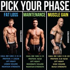 PICK YOUR PHASE -In the grand scheme of bodybuilding, there's 3 phases, the fat loss phase, the maintenance phase or the muscle gain phase. You're always doing one of these 3 things. If you have a specific goal in mind that you want to strive for, whether it's to drop that body fat, make some gains or stay the same weight, refer to this.-For FAT LOSS, your calories should equate to somewhere between your BW (lbs) x 10-14, protein should be your BW (lbs) x 1-1.2. Maintaining strength!