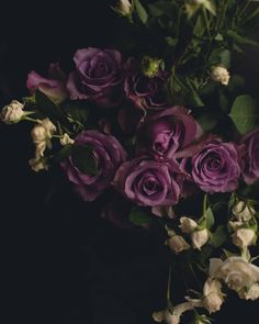 "Kate Ozolina (@kate.ozolina) on Instagram: ""Sunday Blooms  #flowerpower #sundaymood #flowerphotography #softpastel #flowerbouquet…"""