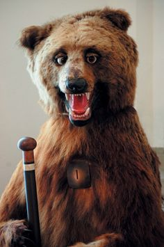 Brown bear with walking stick. Photograph: Karin/Octopus Publishing