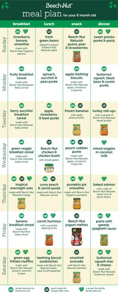 Baby Food Meal Plan for Your 8 Month Old Adding Texture - Mittagessen rezept 7 Month Old Baby Food, 7 Months Baby Food, 8 Month Old Baby, Baby Meal Plan, Baby Food Schedule, 8 Month Old Schedule, Baby Snacks, Baby Foods, Baby Meals