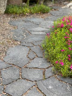 Stepping Stones, Sidewalk, Outdoor Decor, Home Decor, Stair Risers, Decoration Home, Room Decor, Side Walkway, Walkway