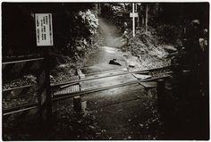 photo by Junku Nishimura
