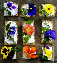 These are slices of bread with edible flowers. Original idea for a snack and it looks sweet and inviting. Flower Cafe, Flower Food, Number Cakes, Edible Flowers, Canapes, Food Illustrations, Sugar And Spice, Food Design, Herbs