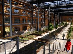 IN-SITU_Paris_Rosa-Luxemburg-garden-18 « Landscape Architecture Works | Landezine