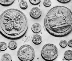 Coins Ancient Greece and Rome 1903 Edwardian Era Numismatics Illustration To Frame