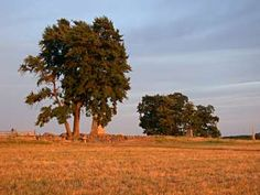 View of '' The Angle '' taken at sunset...Gettysburg