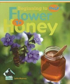 A very pretty book for learning about honey. Fifth Grade, Third Grade, Simple Sentences, Large Photos, Elementary Schools, Teaching Resources, Good Books, Ebooks, Honey