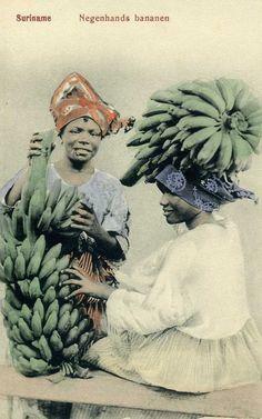Bananas in Suriname (1902)