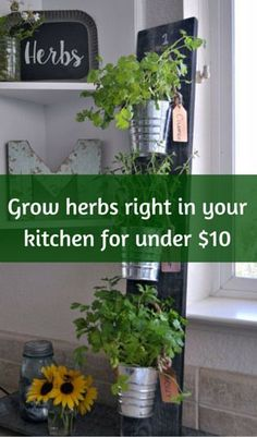 1000 ideas about grow up already on pinterest growing
