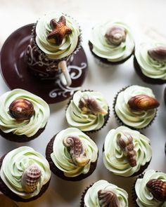 Dreaming of Sicily Cupcakes (Chocolate cupcakes with Vanilla Swiss Meringue Buttercream and Chocolate Shells)