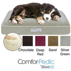 @Overstock - Your pup will love snoozing on this comfortable orthopedic pet bed, which is great for his body. This pet bed is filled with soft memory foam and polyester fiber fill, which contours to your pets form to ensure a peaceful rest and proper healing.http://www.overstock.com/Pet-Supplies/Simmons-Comforpedic-Deluxe-Orthopedic-Napper-Pet-Bed/5877407/product.html?CID=214117 $63.99