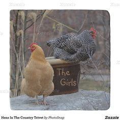 Hens In The Country Trivet