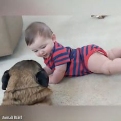 61 Ideas For Cute Children Funny Cats Funny Animal Videos, Cute Funny Animals, Funny Animal Pictures, Cute Baby Animals, Funny Cute, Funny Babies, Funny Kids, Cute Babies, Babies With Dogs