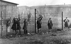 concentration camps in germany   Bergen-Belsen Concentration Camp