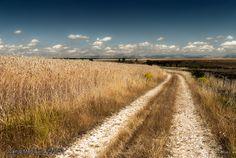 Highway ~ Fotografía Juanjo Mediavilla