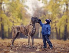Russian Photographer Captures the Charming Connection Between Little Kids and Their Big Dogs - Cheezburger