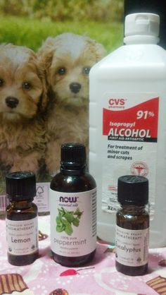 BUG OFF!! All Natural Insect Repellent -- by I-4 Details  http://i-4details.blogspot.com/2013/07/bug-off-all-natural-insect-repellent.html