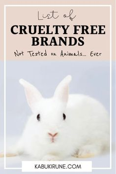 Cruelty-Free Brands List (updated 2021) - Kabuki Rune Ethical Brands, Cruelty Free Makeup, Animal Testing, Makeup Brands, Beauty Makeup, Fashion Beauty, Jewellery, Tips, Check