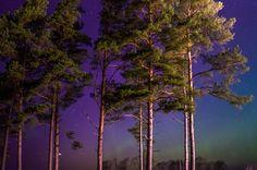 Virmalised 17.03.15 - Aurora Borealis 17.03.15