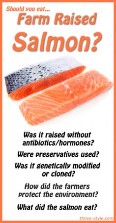 Should you eat farmed salmon? Do you want to eat sick salmon infected with multiple viruses like most all farmed salmon today? These fish would not survive in the wild, are sick, some with sores. Farmed infecting/killing millions of wild salmon. Why should you NEVER buy farmed salmon only wild salmon? http://www.smarthealthtalk.com/farmed-salmon-infected-with-viruses.html