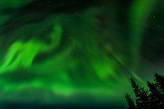Aurora Borealis 18, Grayling Lake, Riding Mountain National Park, Manitoba, Canada