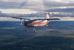 Avialessookhrana Antonov An2