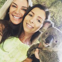 #selfie com o koala!  #currumbin #currumbinwildlifesanctuary #koala #australia #queensland by marigroth http://ift.tt/1X9mXhV