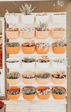 Orange Aesthetic, Summer Aesthetic, Photo Wall Collage, Picture Wall, Aesthetic Backgrounds, Aesthetic Wallpapers, Good Vibe, Aesthetic Room Decor, Aesthetic Pictures